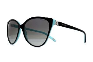 Tiffany & Co TF4089B Sunglasses | EyeWearThese